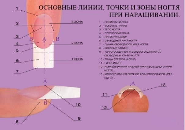 Как правильно сделать нарощенные ногти