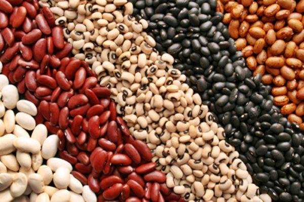 В каких продуктах находится белок. Топ-10 белковых продуктов