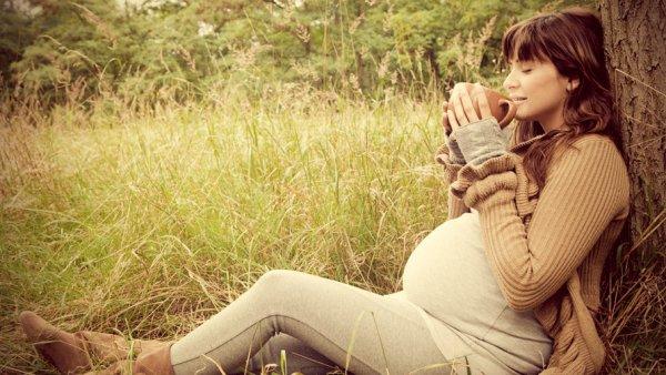 Можно ли беременным женщинам пить цикорий (растворимый напиток)