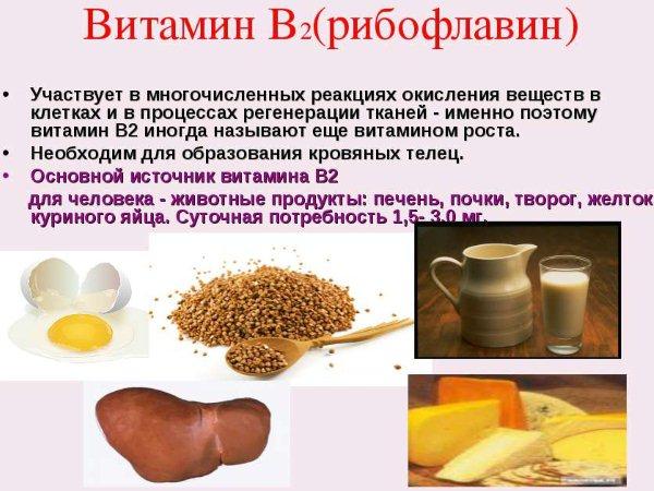 Витамин B2: в каких продуктах содержится