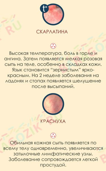 melkaya-syip-na-litse-u-grudnichka-6