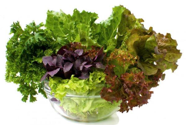 Огуречная диета: отзывы и результаты + фото