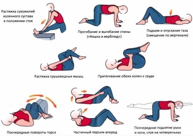 Гимнастика для тренировки мышц живота