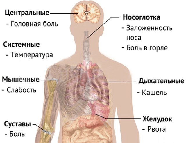 Какое лекарство от простуды самое эффективное