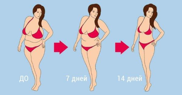 На сколько кг можно похудеть