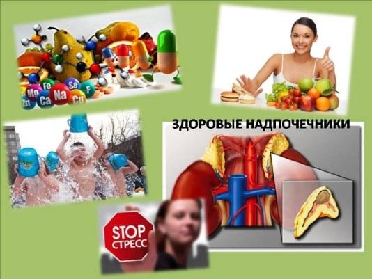 Надпочечники. Симптомы и причины заболевания, диагностика, лечение