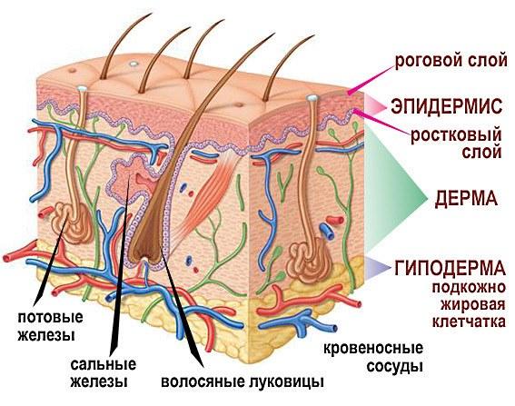 заболевания вызывающие запах изо рта
