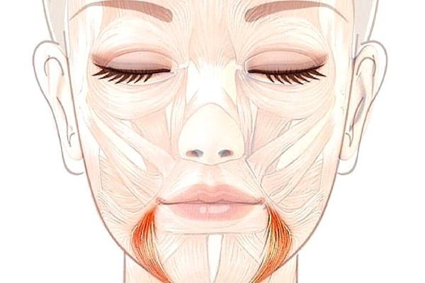 Гимнастика (упражнения) от брылей на лице. Техника выполнения, правила