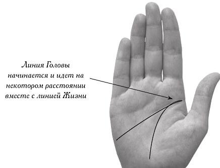 Хиромантия для начинающих: значения линий на ладони. Предварительный анализ рук