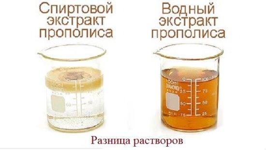 Настойка прополиса. Инструкция по применению. Лечение болезней, применение в косметологии