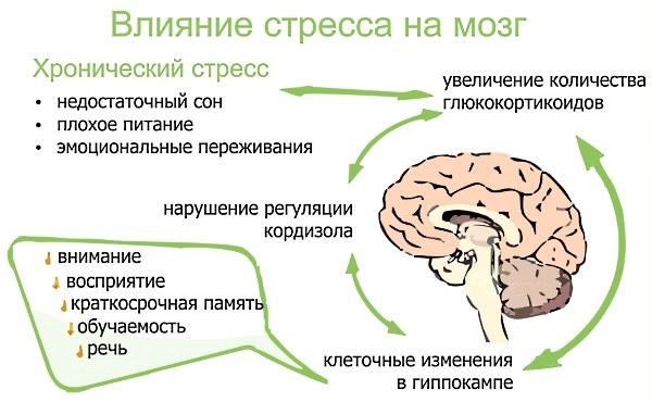 Патрик Фэннинг. Теория и практика: Как победить страх и депрессию