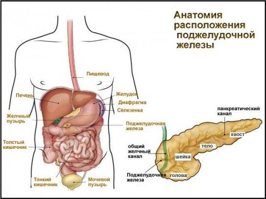 Народные методы лечения матки у женщин