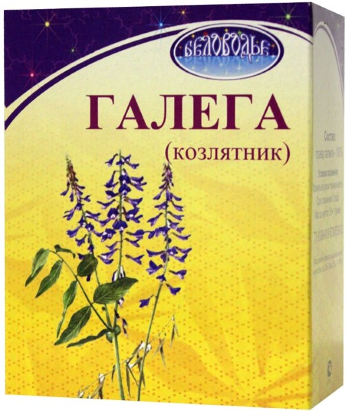Трава галега. Лечебные свойства при сахарном диабете. Применение