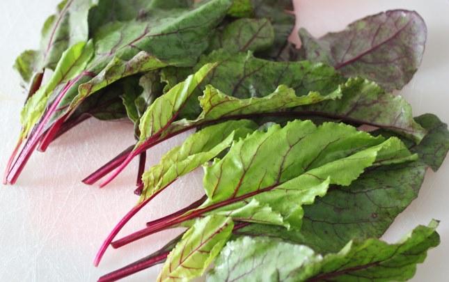 Листья свеклы (ботва) - польза и вред для организма, рецепты применения