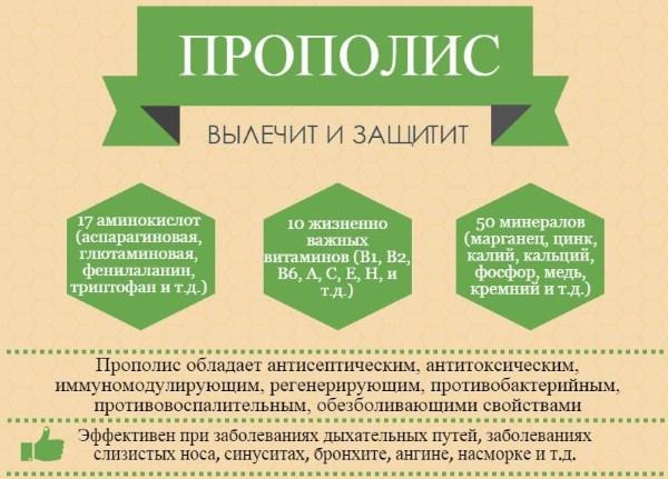 Настойка прополиса. Лечебные свойства и противопоказания. Приготовление на спирту, применение для иммунитета
