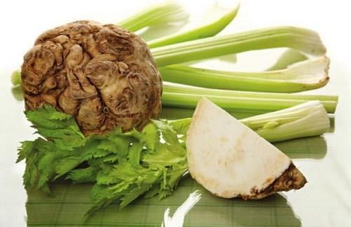 Сельдерей - польза и вред, лечебные свойства для здоровья женщин и мужчин, рецепты приготовления стебля и корня. Как применять и противопоказания