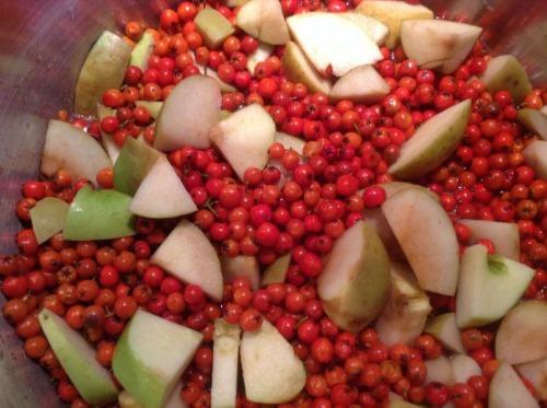 Полезные свойства брусники. Домашние рецепты приготовления на зиму варенья, настойки, заготовка и хранение