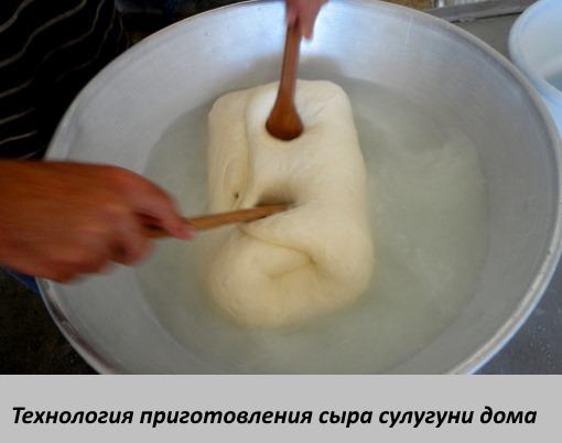 Как сделать сыр в домашних условиях из молока, творога, кефира, сметаны, козьего, сухого молока. Пошаговые рецепты с фото