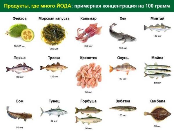 Таблица продуктов, содержащих йод в больших количествах. Список для беременных, детей, женщин, мужчин
