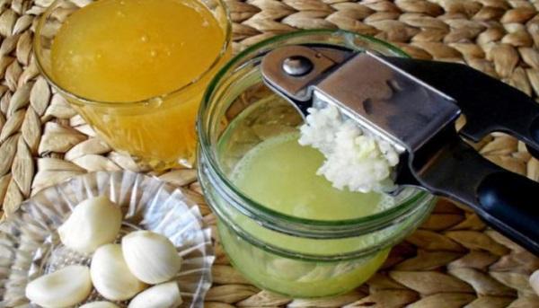 Чеснок. Польза и вред для здоровья, лечебные свойства для организма человека. Рецепты употребления с молоком, медом, лимоном, уксусом. Как употреблять