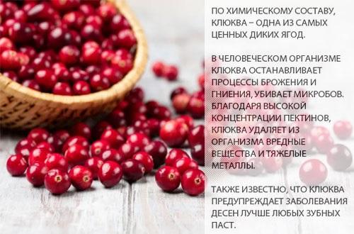 Морс из клюквы. Рецепты, как приготовить, варить замороженную. Польза для взрослых и детей, при беременности