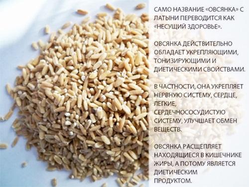 Отвар овса. Лечебные свойства и противопоказания, польза и вред. Как готовить и принимать