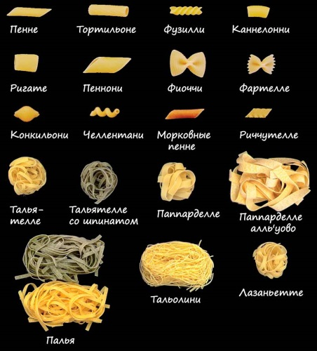 Паста с курицей в сливочном соусе. Как приготовить пошагово, рецепты: классический, Фетучини, с грибами шампиньонами, овощами, беконом, сыром, чесноком