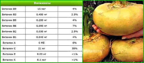 Репа. Польза и вред для здоровья, организма человека, калорийность свежей, вареной. Блюда из репы, рецепты приготовления овоща