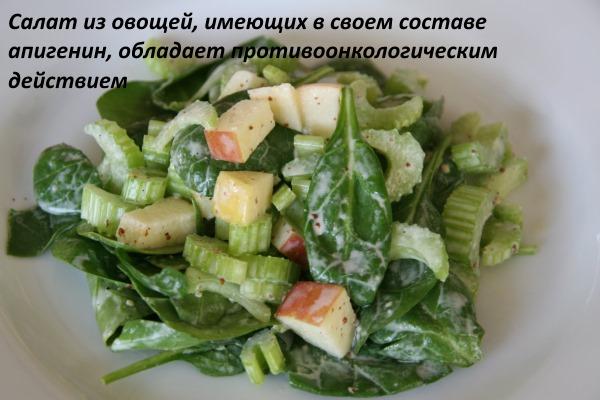 Польза и вред сельдерея для здоровья женщины, мужчины, ребенка. Рецепты при гипертонии, для похудения, потенции. Как готовить в кулинарии