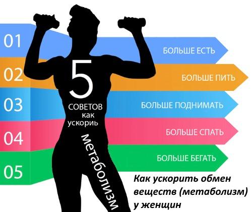 обмен веществ метаболизм