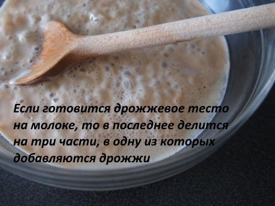 Дрожжевое тесто для булочек в духовке на сухих дрожжах. Рецепты с молоком, яйцами и без, с маргарином, повидлом, водкой