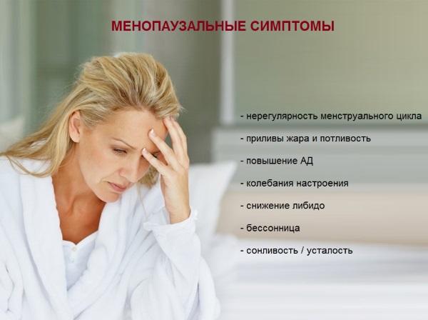 Бузина черная. Лечебные свойства и противопоказания для здоровья женщин и мужчин. Рецепты приготовления