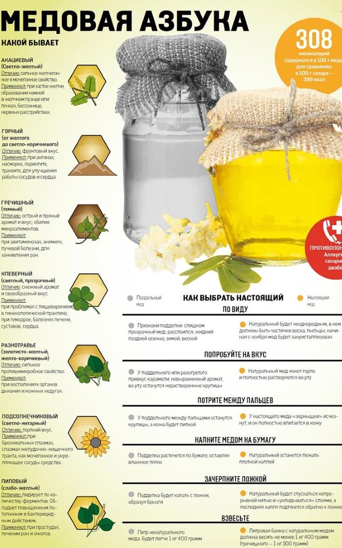 Польза и вред меда в сотах, утром натощак с водой и лимоном, корицей, творогом, на ночь с молоком, рапсовый, гречишный, тыквенный, подсолнуха