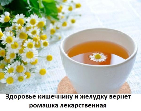 Ромашковый чай: польза и вред для женщин, при беременности, грудном вскармливании, детей, мужчин. Свойства, как заваривать, принимать