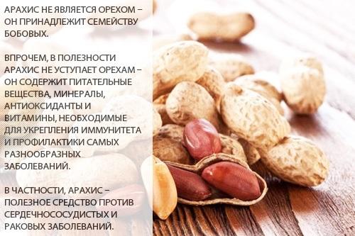 Арахисовая паста. Состав, калорийность, польза и вред. Рецепты, как сделать, с чем лучше употреблять