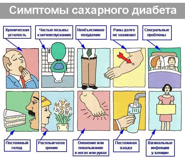 Кориандр полезные свойства и противопоказания для женщин, мужчин, при диабете, климаксе. Рецепты