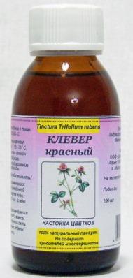 Красный клевер: лечебные свойства и противопоказания. Как принимать капсулы. Рецепты, как заваривать настойку