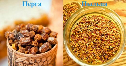 Цветочная пыльца. Польза и применение при онкологии, диабете, простуде, в косметологии для женщин и мужчин