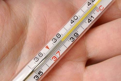 Имбирь. Полезные свойства и противопоказания для мужчин, женщин, детей. Рецепты применения для лечения заболеваний, рекомендации по выбору и хранению