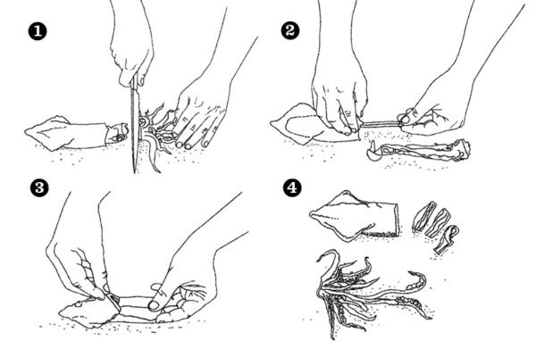 Как приготовить кальмары вкусно и просто: замороженные, жареные, в сметане на сковороде, по-корейски, для салата, с луком. Рецепты