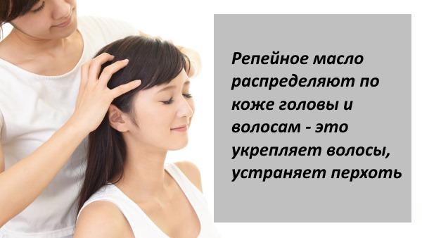 Лопух. Лечебные свойства и противопоказания. Рецепты применения в медицине при онкологии, панкреатите, артрите, миоме, сахарном диабете