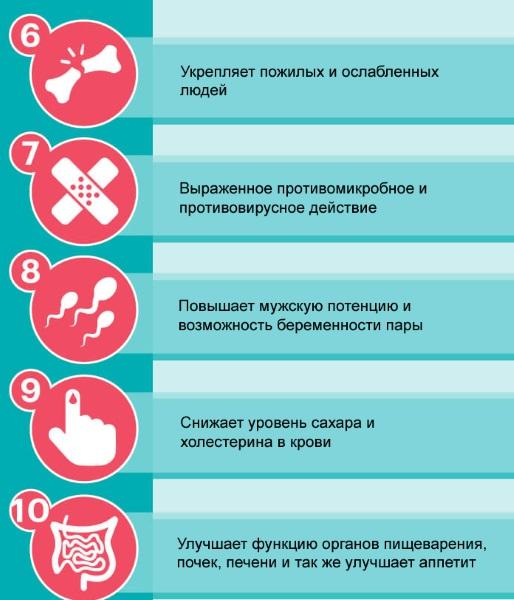 Маточное молочко. Лечебные свойства, как принимать детям, женщинам мужчинам. Состав, показания и противопоказания