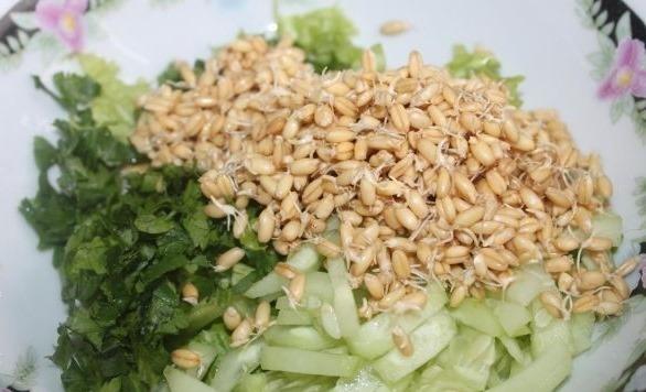 Пророщенная пшеница. Польза и вред, состав, как употреблять зерна, хлеб, брага, салат, самогон, кашу, хлебцы, коктейль, сок