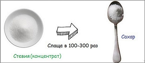 Трава Стевия. Польза и вред, сахарозаменитель в кулинарии, свойства и противопоказания, применение