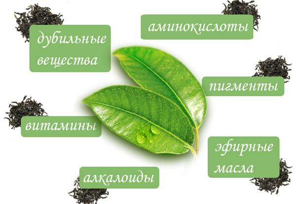 Как заваривать черный чай, польза, вред, калорийность листового, байхового, цейлонского. Как пить для похудения, при беременности, детям