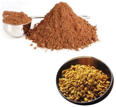 Полезные свойства пажитника: сенной, голубой, шамбала, хельба. Рецепты, как применять, противопоказания