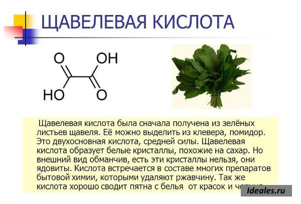 Применение щавелевой кислоты в быту. Свойства, для чего используется, в каких продуктах содержится, чем опасна
