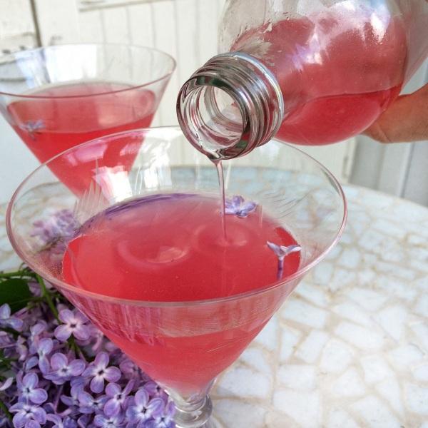 Сироп гренадин, ликер: состав, цена. Безалкогольные, алкогольные коктейли с гренадином, рецепты приготовления