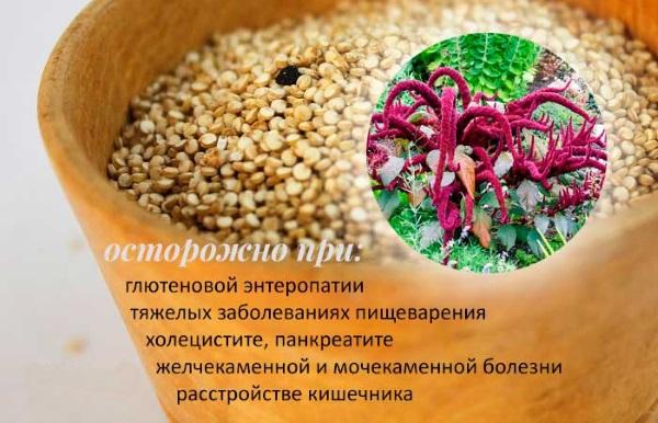Полезные свойства амаранта. Применение в пище, косметологии и медицине