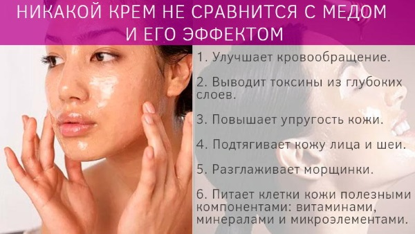 Гречишный мед. Полезные свойства, рецепты применения в народной медицине для женщин, мужчин и детей